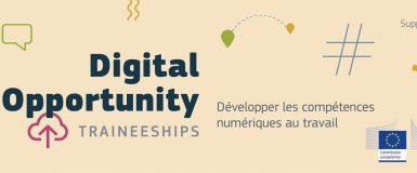 Recrutez un stagiaire pour augmenter le niveau numérique de votre PME !